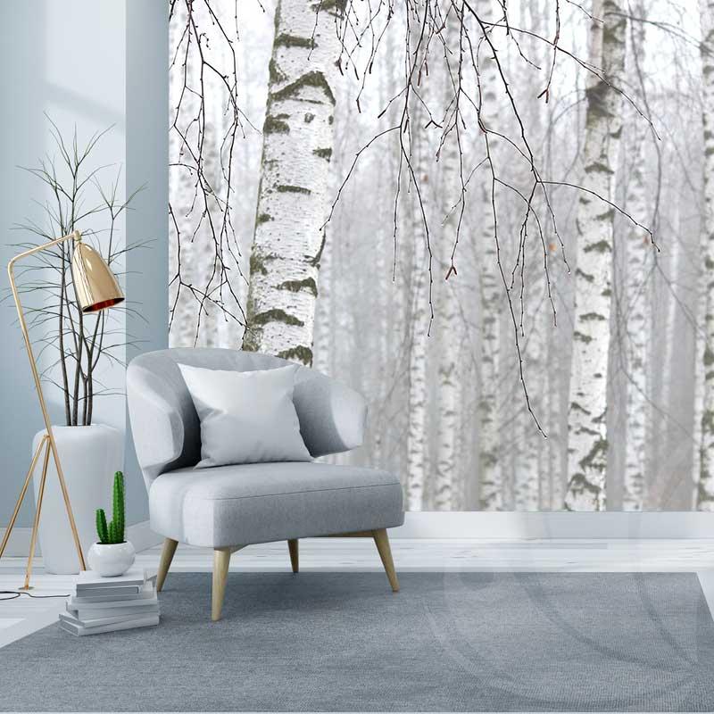 Birch Forest Wallpaper