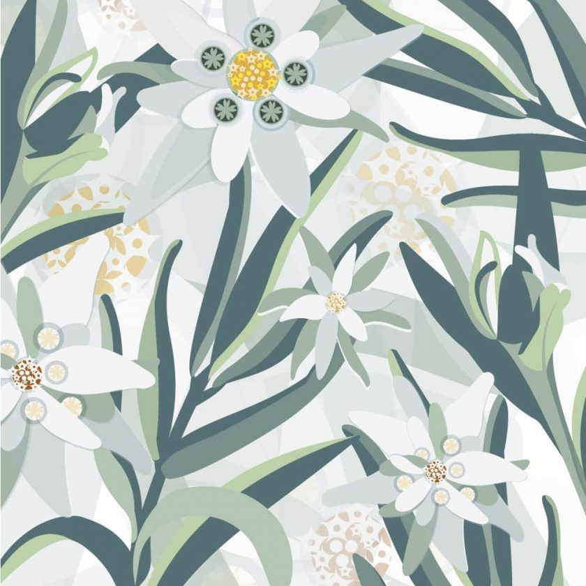 Floral Wall Graphic Pattern