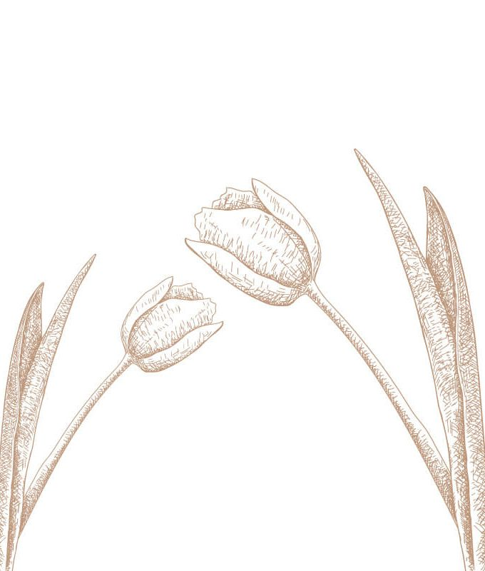Tulip Wall Decal