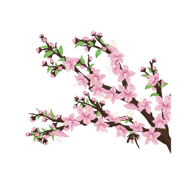 Peach Blossom Tree Decal
