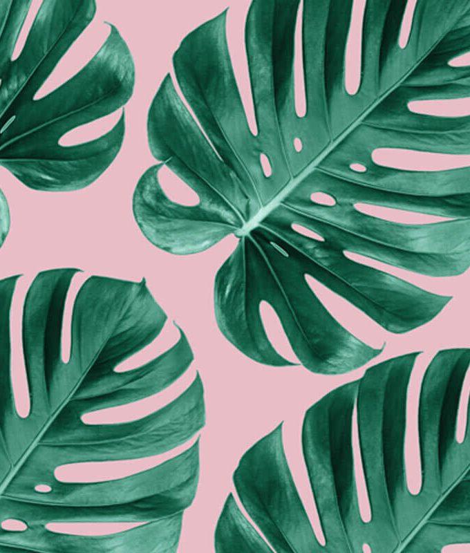 Monstera Green Leaves Pattern
