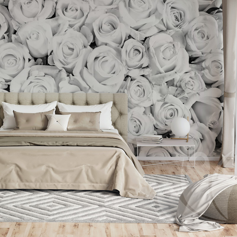 White Roses Wall Mural