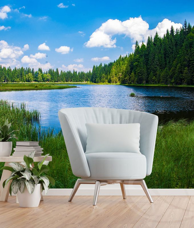 Forest River Wall Mural
