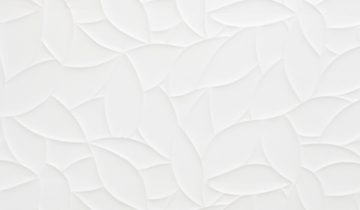 Matte Vs Textured Murals