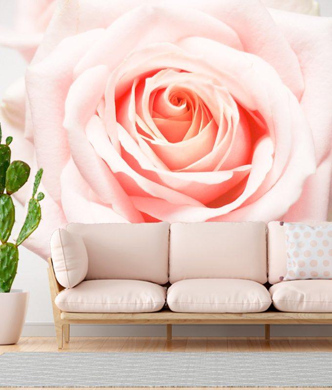 Giant Rose Wallpaper